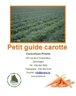 petit-guide-carotte
